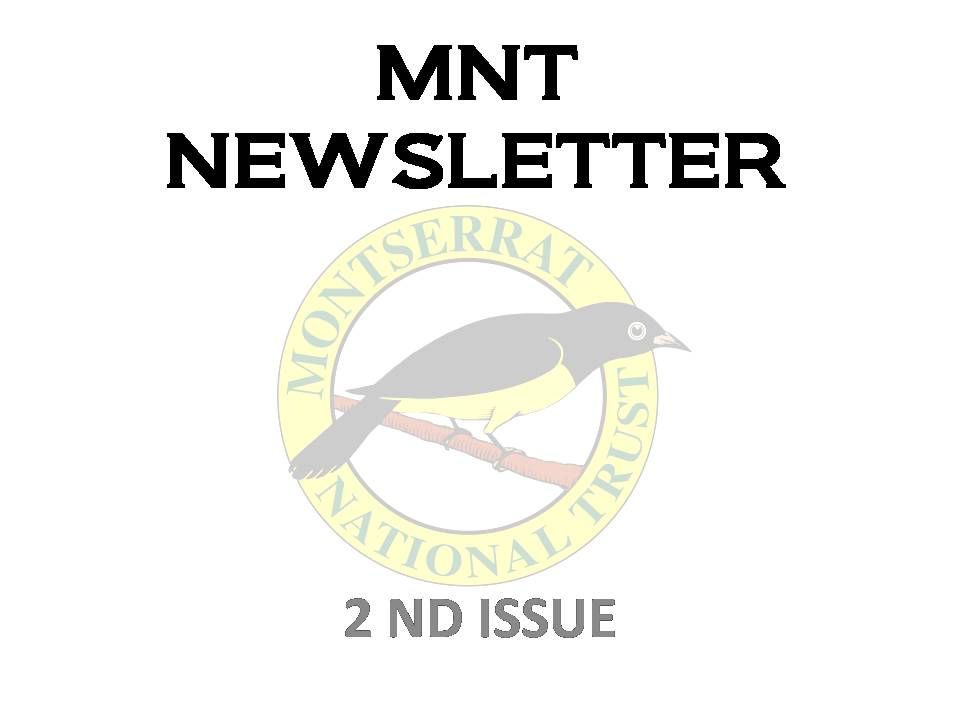 MNT NEWSLETTER
